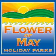 Flower of May